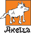 Akella Company, the lead Russian publisher of computer games and other software